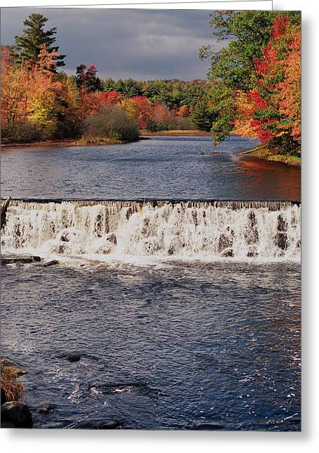 Falls Color Greeting Card by Joann Vitali