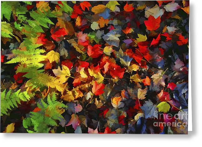 Falls Color Palette Greeting Card by Dan Friend