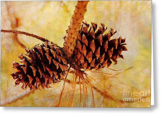 Greeting Card featuring the photograph Fall's Golden Light by Trina  Ansel