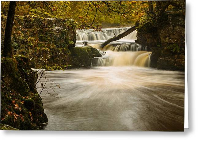 Falls In Fall Greeting Card by Izzy Standbridge