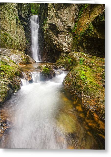 Falls Of Song Greeting Card