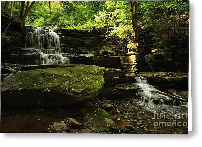 Greeting Card featuring the photograph Fallsbrook Falls by Debra Fedchin