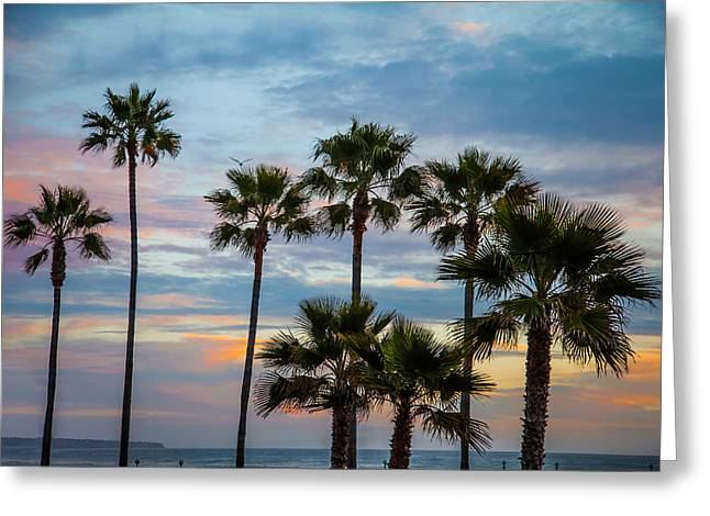 Family Of Palms Greeting Card