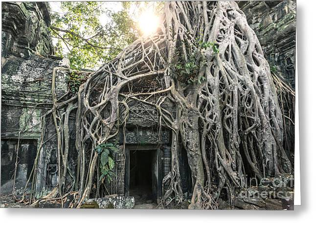 Famous Old Temple Ruin With Giant Tree Roots - Angkor Wat - Cambodia Greeting Card