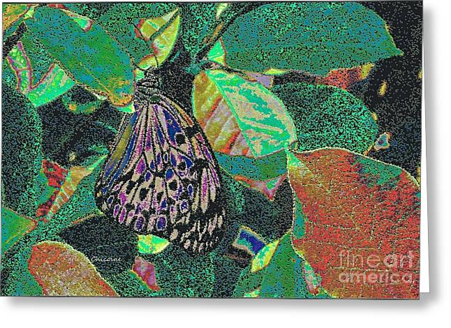 Greeting Card featuring the photograph Fanciful by Kathie Chicoine