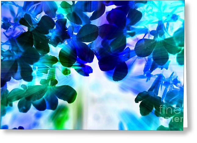 Greeting Card featuring the photograph Fantasy Florals by Denise Tomasura