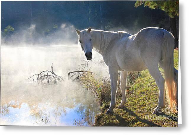 Fantasy Fog Greeting Card by Leslie Kirk