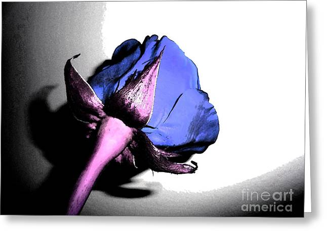 Fantasy Purple And Pink Rose Greeting Card by Minding My  Visions by Adri and Ray