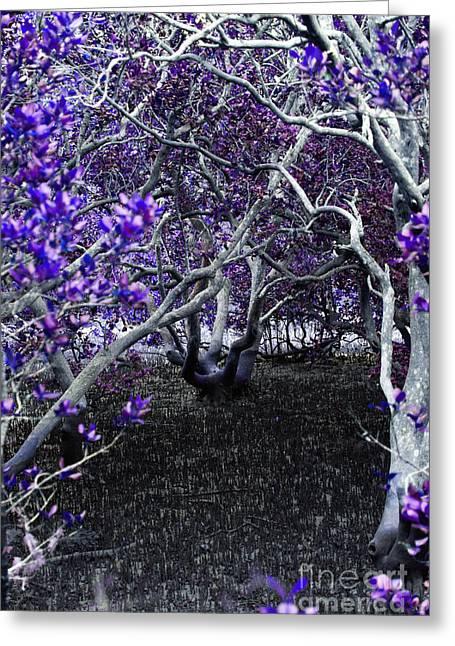 Fantasywood Greeting Card