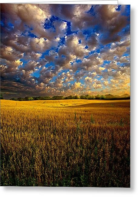 National geographic greeting cards page 11 of 77 fine art america far from home greeting card m4hsunfo