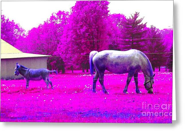 Greeting Card featuring the photograph Farm Friends - Animals by Susan Carella