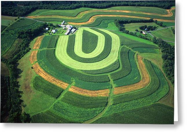 Farm Greens And Hillside Contour Plowing Greeting Card by Blair Seitz