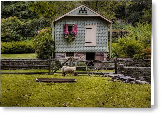 Farm House And Babydoll Sheep Greeting Card by Susan Candelario