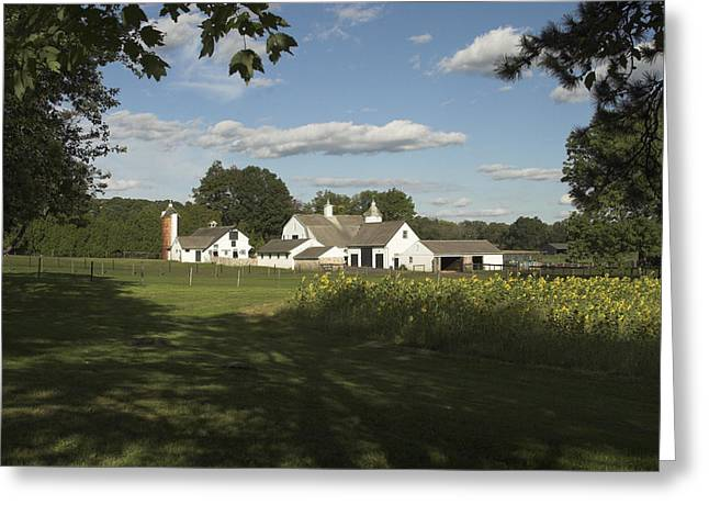 Farm House In Pa Greeting Card
