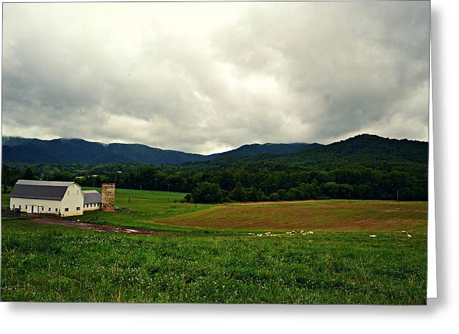 Farm In Swannanoa Nc Greeting Card