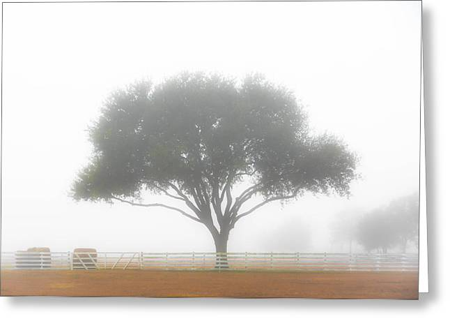 Farm On A Foggy Morning Greeting Card