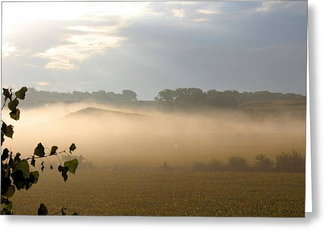 Farm Morning By Angieclementine Greeting Card by Angie Phillips
