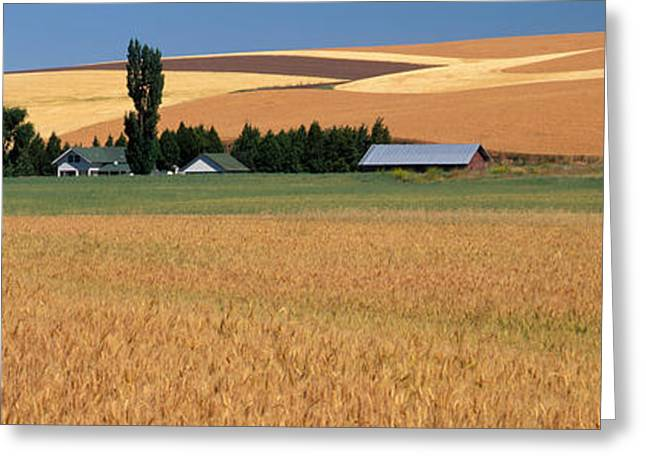 Farm, Saint John, Washington State, Usa Greeting Card by Panoramic Images
