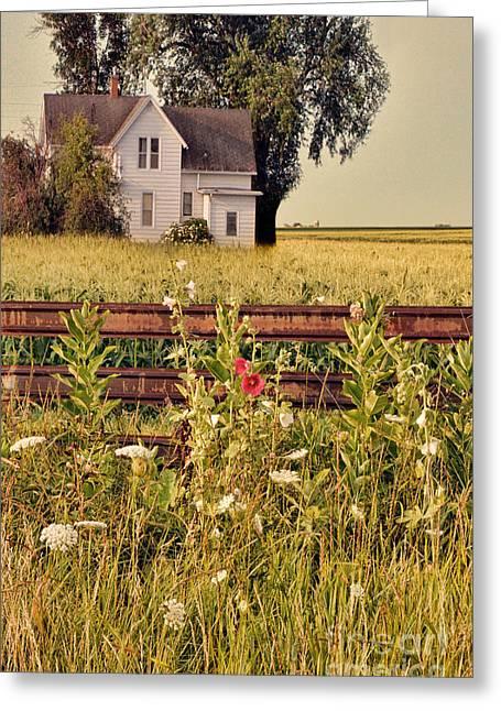 Farmhouse And Hollyhocks Greeting Card by Jill Battaglia