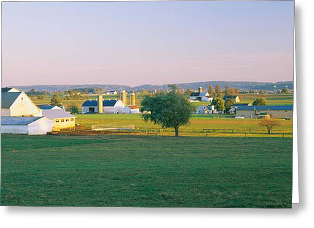 Farmhouse In A Field, Amish Farms Greeting Card by Panoramic Images