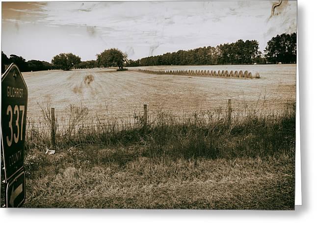 Farming Greeting Card by Howard Salmon
