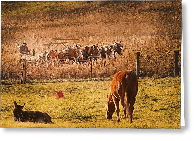 Farming  Modes Of Transportation Greeting Card by Randall Branham