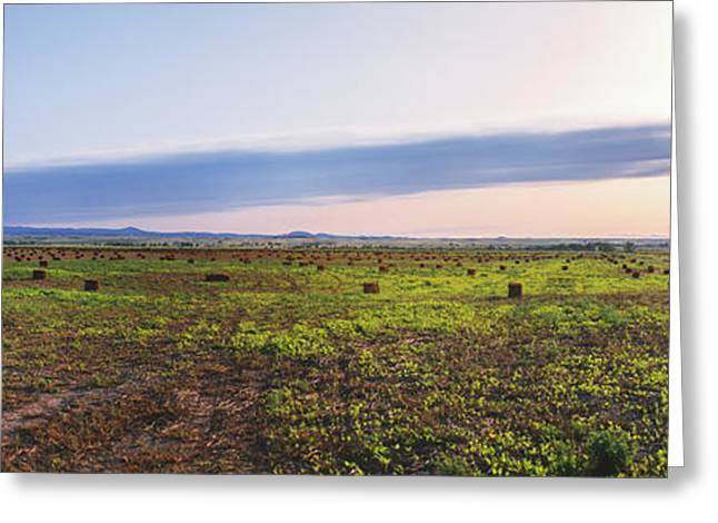 Farms At Sunset, Vale, Butte County Greeting Card