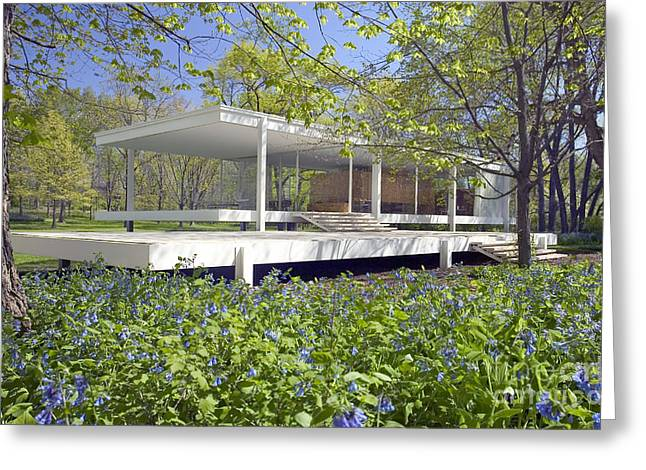 Farnsworth House Illinois Greeting Card by Martin Konopacki