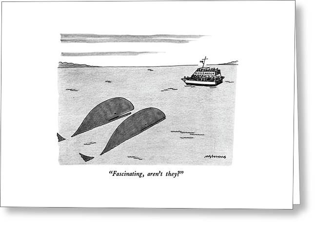 Fascinating Greeting Card by Mick Stevens