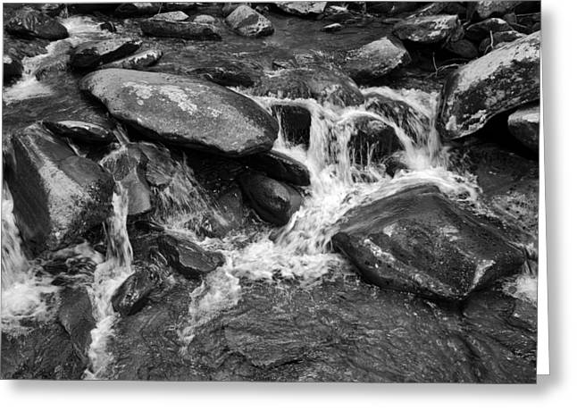 Fast Flow Bw Greeting Card by Christi Kraft
