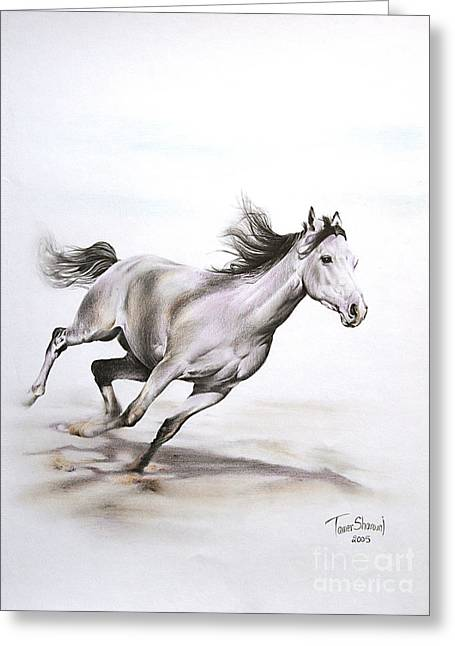 Fast In The Spirit Greeting Card by Tamer and Cindy Elsharouni