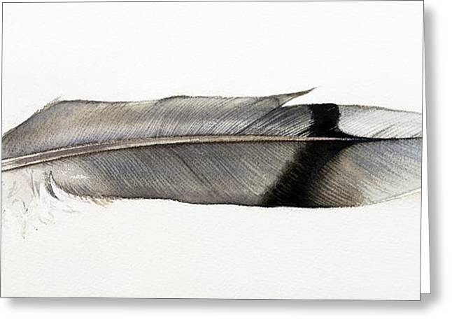 Feather Greeting Card by Ann Miller