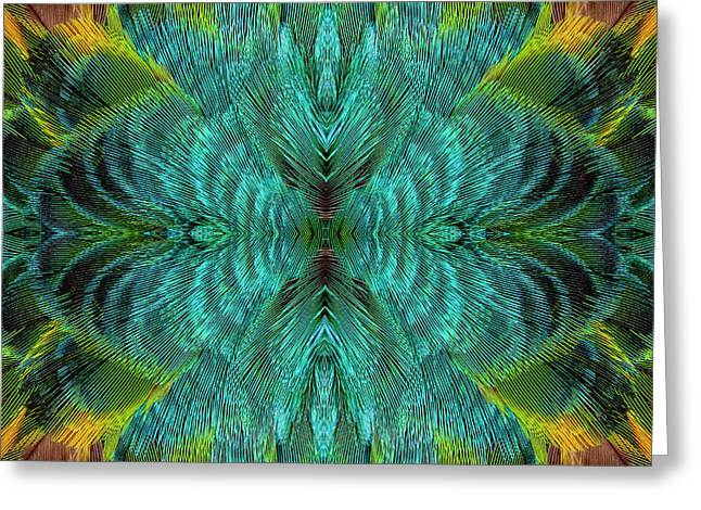 Feather Design Greeting Card by Darrell Gulin