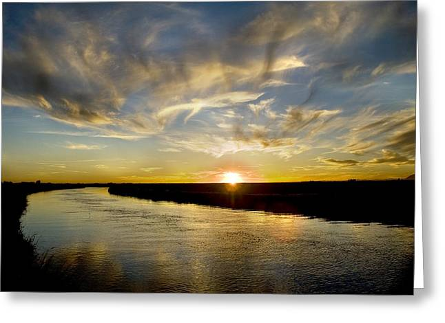 Feathered Sunset Greeting Card