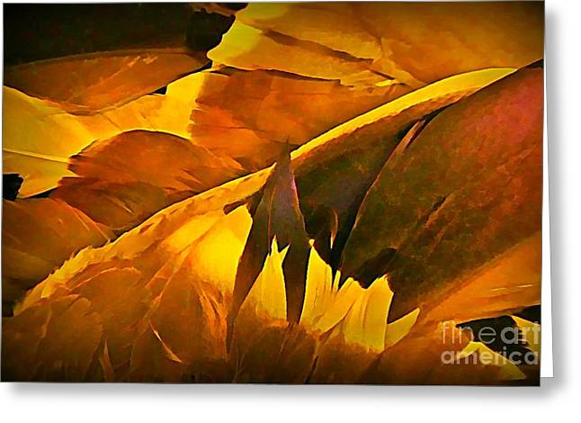 Feathers Greeting Card by John Malone
