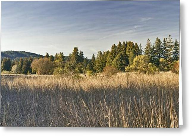 February 21 Panorama Greeting Card by Larry Darnell