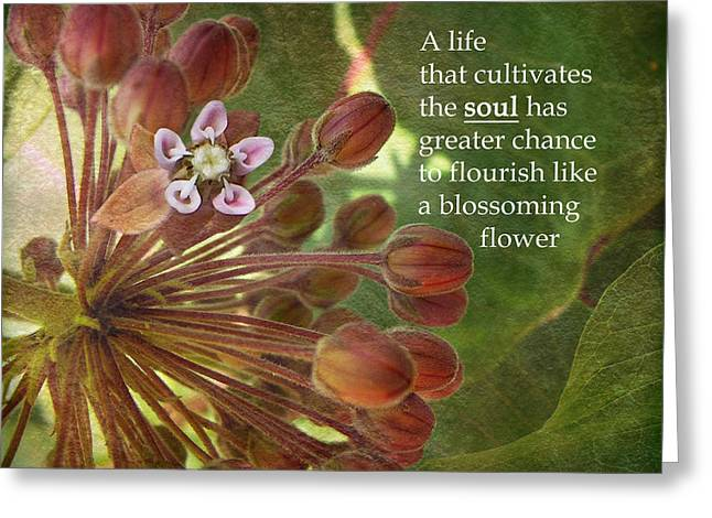 Feed The Soul Greeting Card