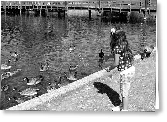 Greeting Card featuring the photograph Feeding The Birds by Heidi Manly