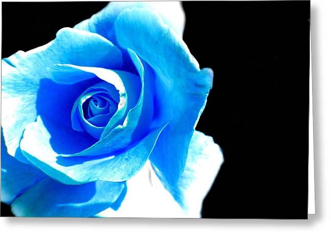 Feeling Blue Greeting Card by Marianna Mills