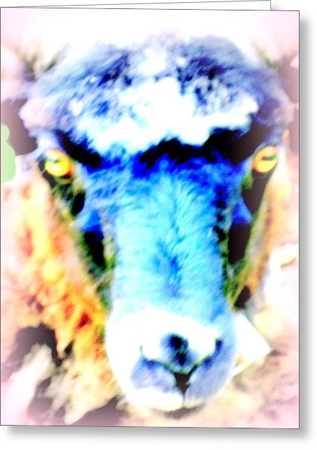 I Have This Terrible Sheep Feeling  Greeting Card by Hilde Widerberg