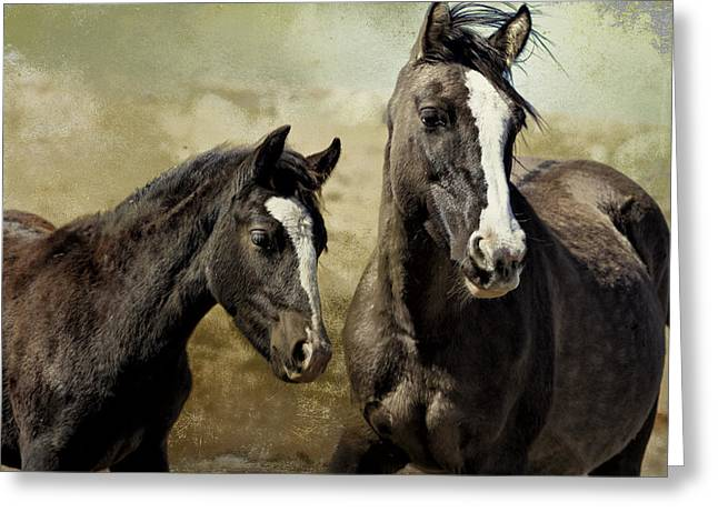 Feldspar And Ohanzee  - Pryor Mustangs Greeting Card
