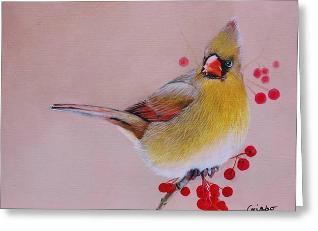 Female Cardinal Greeting Card