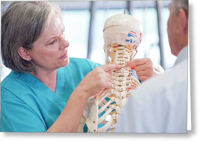 Female Chiropractor Showing Anatomical Model Greeting Card