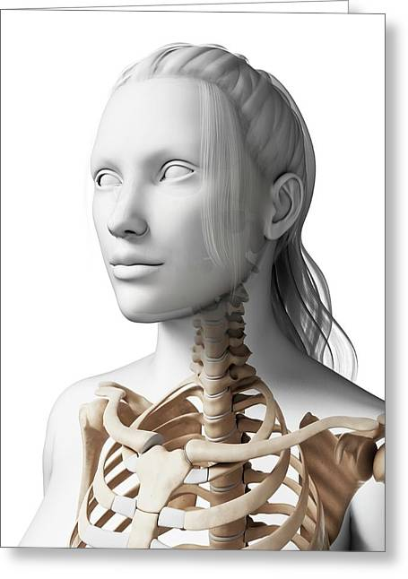 Female Neck Bones Greeting Card