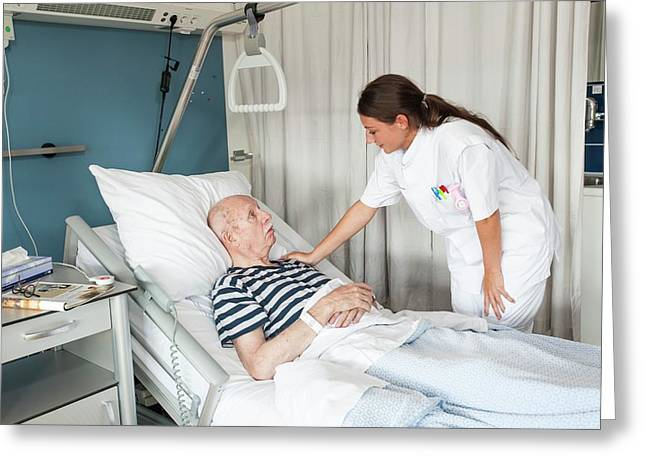 Female Nurse With Hand On Patient's Shoulder Greeting Card by Arno Massee/science Photo Library