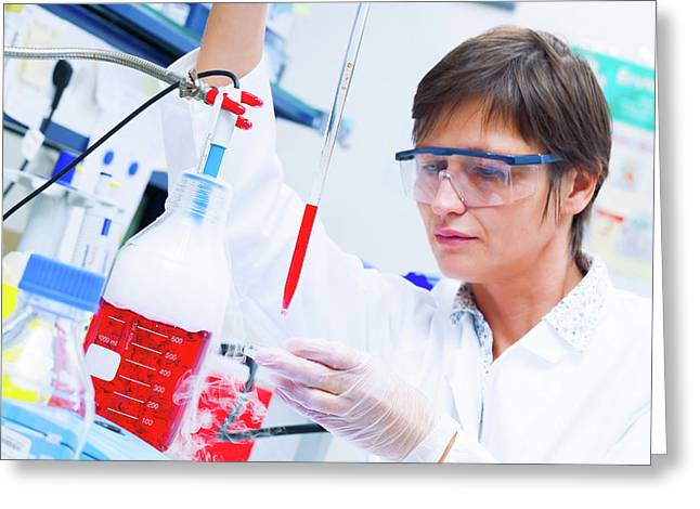 Female Technician Working In A Lab Greeting Card