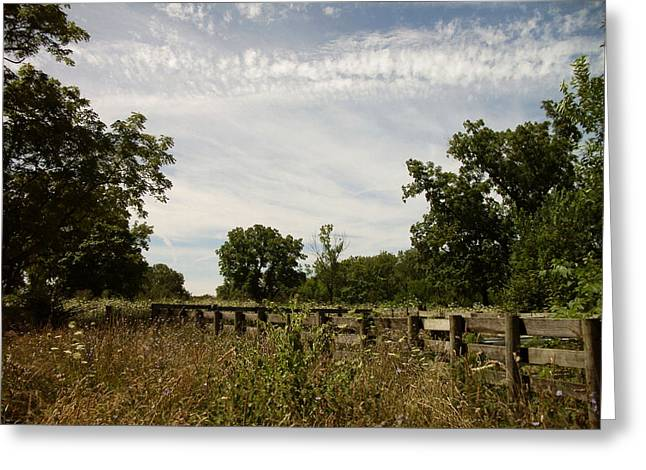 Greeting Card featuring the photograph Fence 2 by Cynthia Lassiter