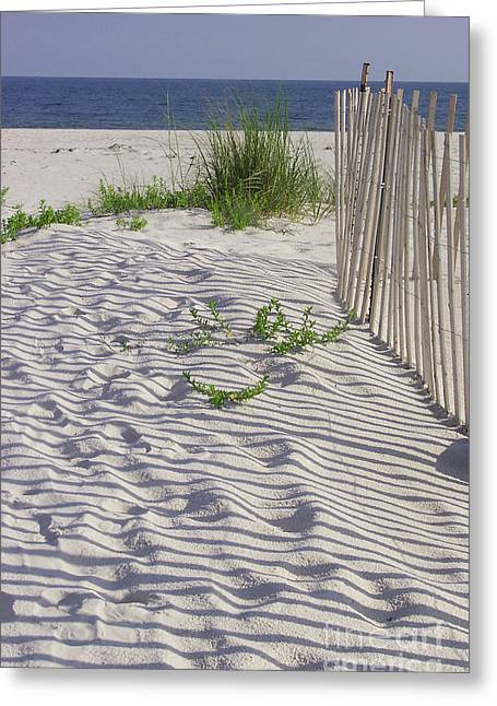 Fence And Shadow Greeting Card
