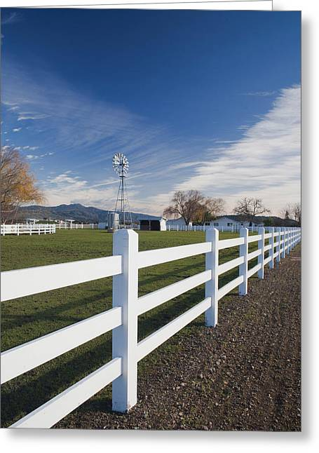 Fence At A Winery, Rutherford, Wine Greeting Card by Panoramic Images