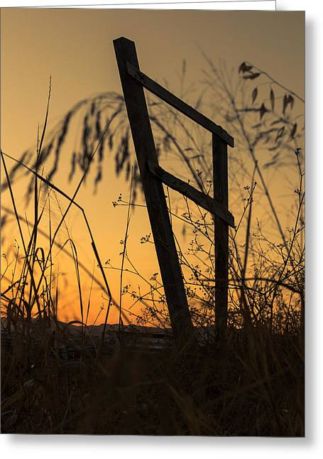 Fence At Sunset I Greeting Card by Marco Oliveira